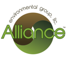 Alliance Group Inc
